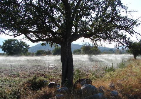 Watering crops on Lassithi