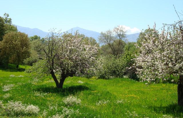 Lassithi May 09