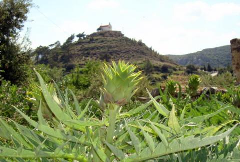 Crete March 2010 040.JPG