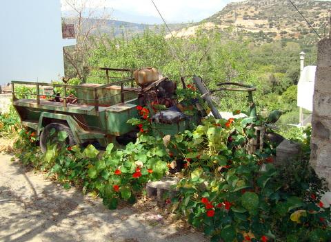 Crete March 2010 045.JPG